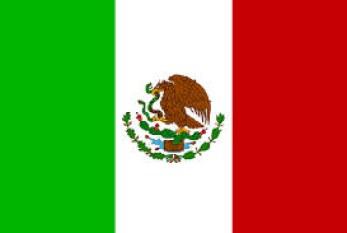 México: Histoplasmosis, más que una enfermedad laboral