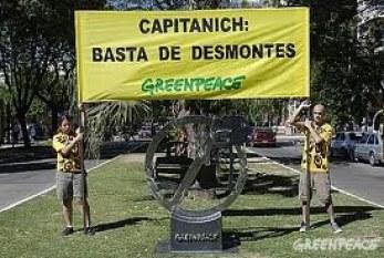 Greenpeace en Argentina y sus victorias verdes