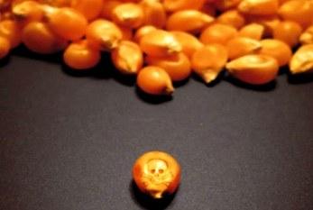 Monsanto: Mucho peor que Glifosato