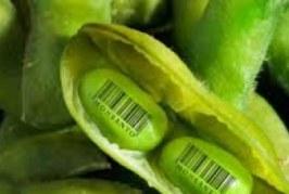Â¡Monsanto fuera de Chile!