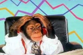 """San viernes, ¡Desestresate!: """"Mono ejecutivo"""""""