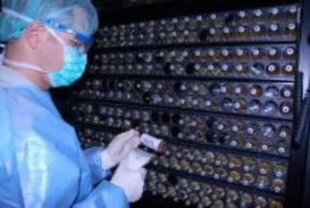 OSHA: Próxima campaña «Trabajos saludables»