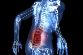 España: Los trastornos músculo-esqueléticos, casi la mitad de las enfermedades y bajas laborales