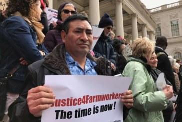 Trabajadores agrícolas de NY arrecian lucha por derecho a sindicalizarse