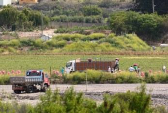 Chile: Aumenta preocupación por derechos laborales de los temporeros agrícolas