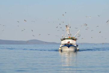 Actividad abierta de la Comisión de Pesca en Altura en Chubut