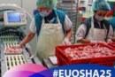 Las pequeñas y micro empresas lideran la lista de beneficiarios de las actividades de la EU-OSHA