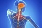 Esclerosis múltiple: cuando la dolencia afecta a quienes están en plena etapa laboral